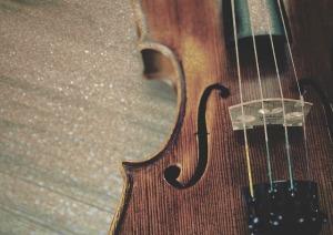 fiddle