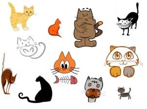 _gatos_