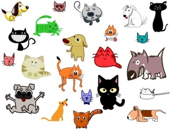 talking cats and dogs